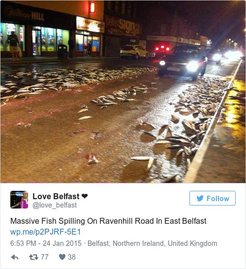 Tweet by @Love Belfast ❤️