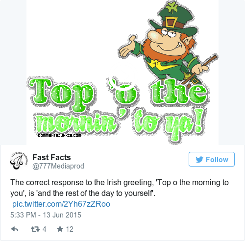 12 questions irish people have for the rest of the world the correct response to the irish greeting top o the morning to you is and the rest of the day to yourself picitter2yh67zzroo m4hsunfo