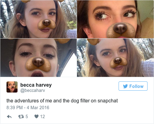 Funniest Meme Pages On Snapchat : The dog snapchat filter is hands down the most important snapchat filter