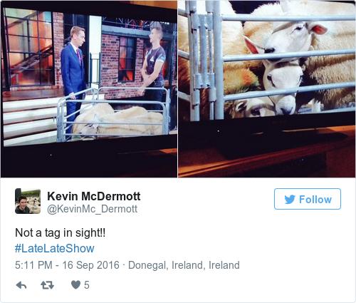 Tweet by @Kevin McDermott