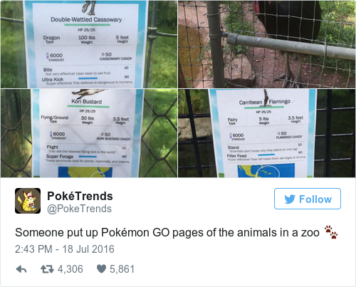 Tweet by @PokéTrends