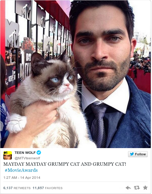 Grumpy cat wore pharrells hat to the mtv movie awards the daily edge grumpy cat wore pharrells hat to the mtv movie awards thecheapjerseys Choice Image