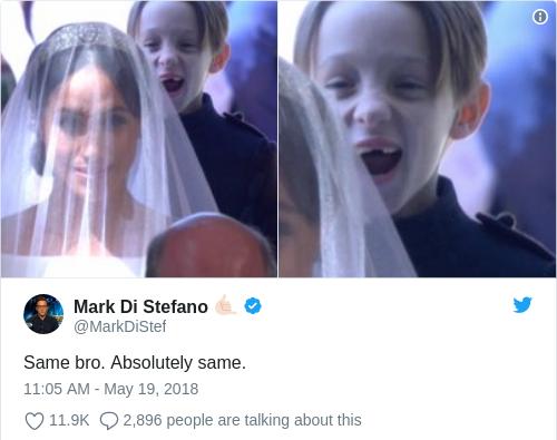 Tweet by @Mark Di Stefano 🤙🏻