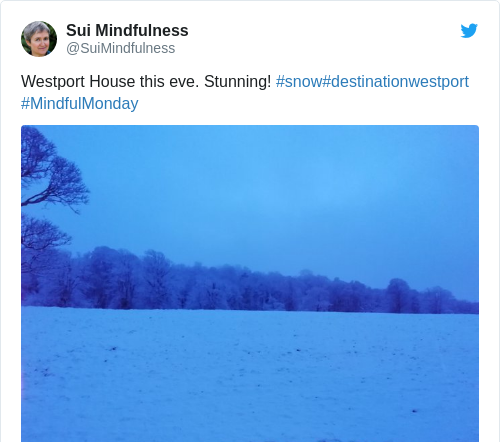 Tweet by @Sui Mindfulness